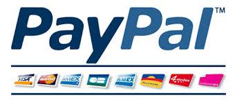 Paypal magnetiques paiement